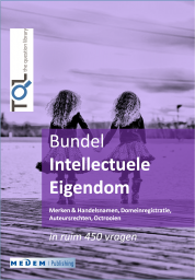 eBundel Intellectuele Eigendom (IE)